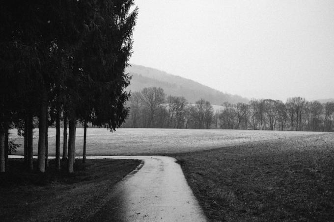 Landschaft in der Nähe von Wissen (Sieg)