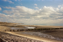 zeeland-netherlands-03.18-landscape-rollei35-kodak-portra400-pushed(15)