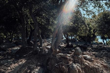 navidsonstreets-greece-samothraki-samothrace-chapel-kremiotissa-morning-0326