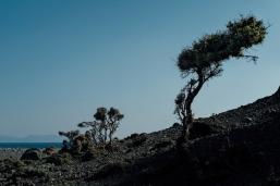 navidsonstreets-greece-samothraki-samothrace-kipos-afternoon-0117