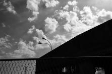 navidsonstreets-rijeka-fiume-sunday-afternoon-june-2018-8194BW